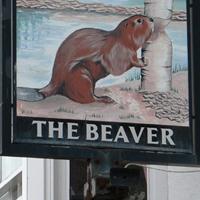 Beaver Pub Beverley